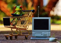 rendere visibile ecommerce