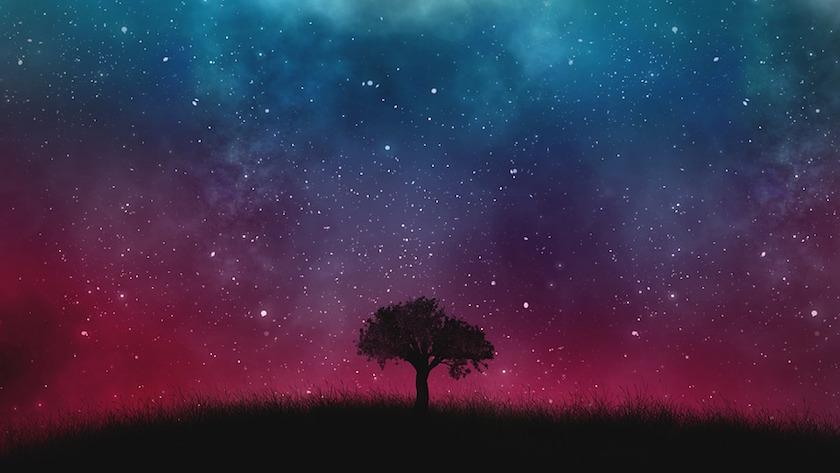 universo pagerank