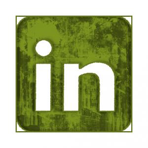 linkedin-icona-verde