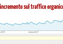 Incremento Traffico Organico