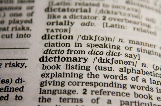 vocabolario seo